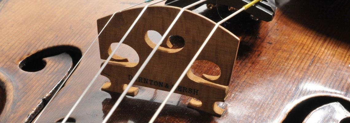 Violin Top